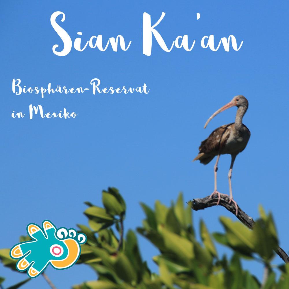 Sian Ka'an Biosphärenreservat