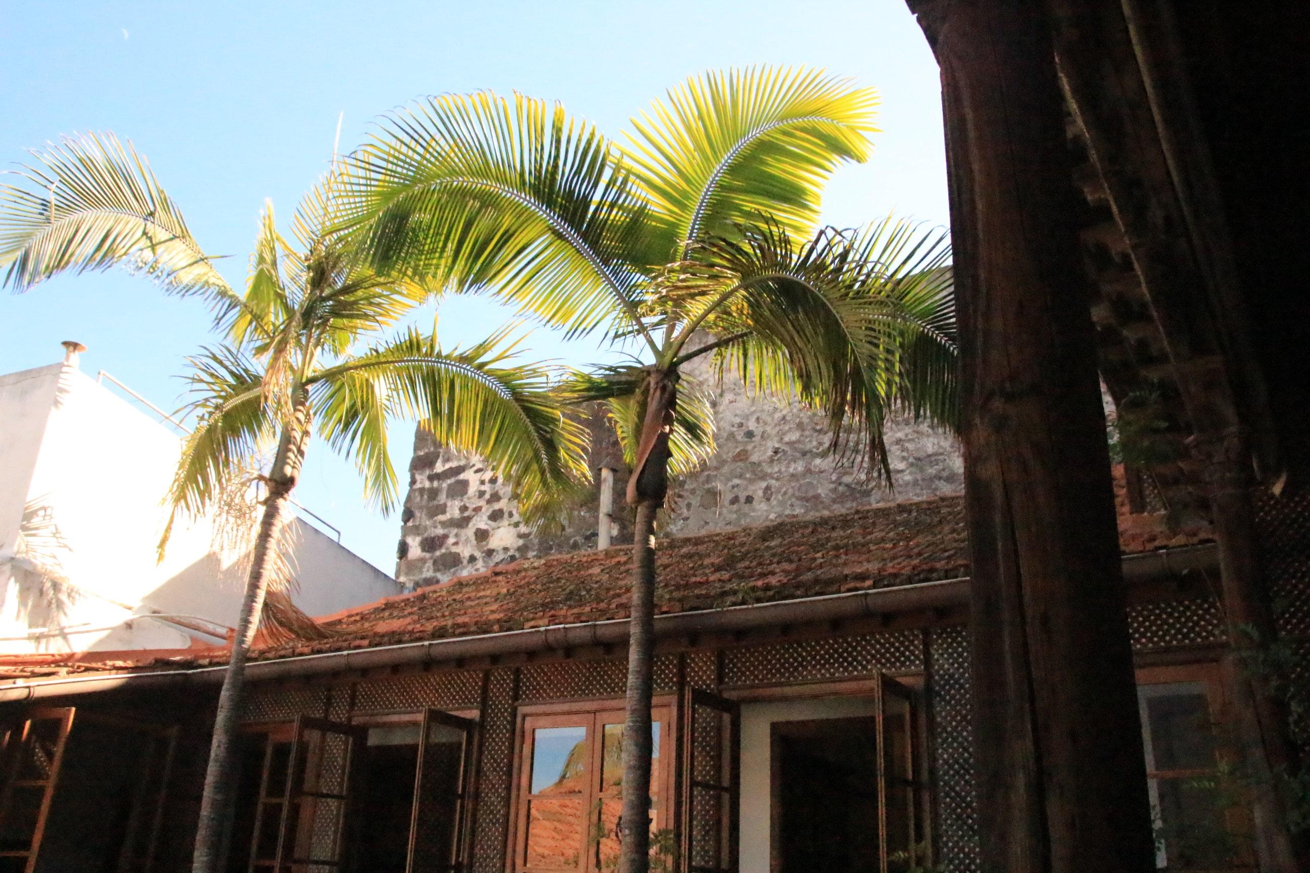 La Orotava Casa de los Balcones 4