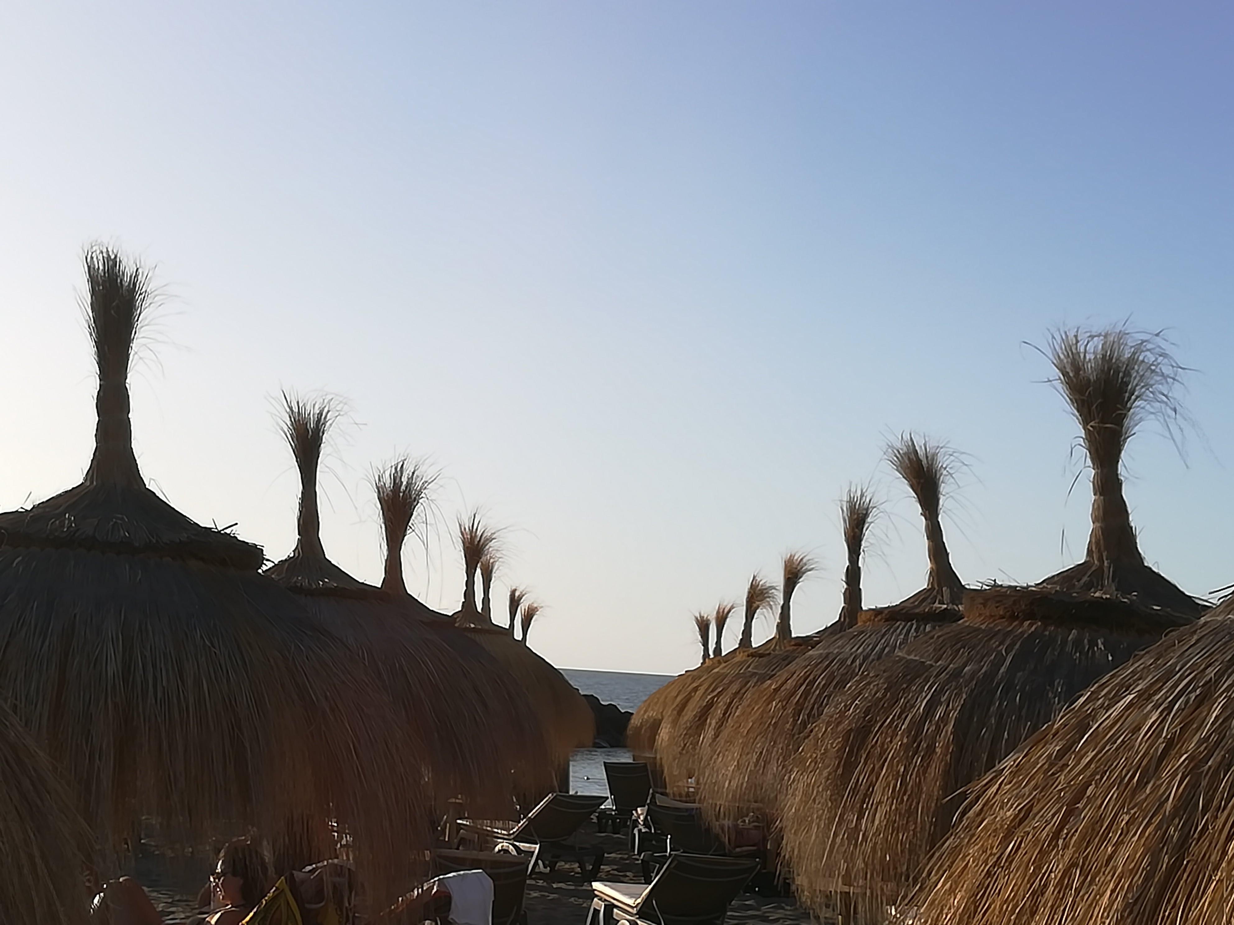 Strandschirme in Playa de las Americas