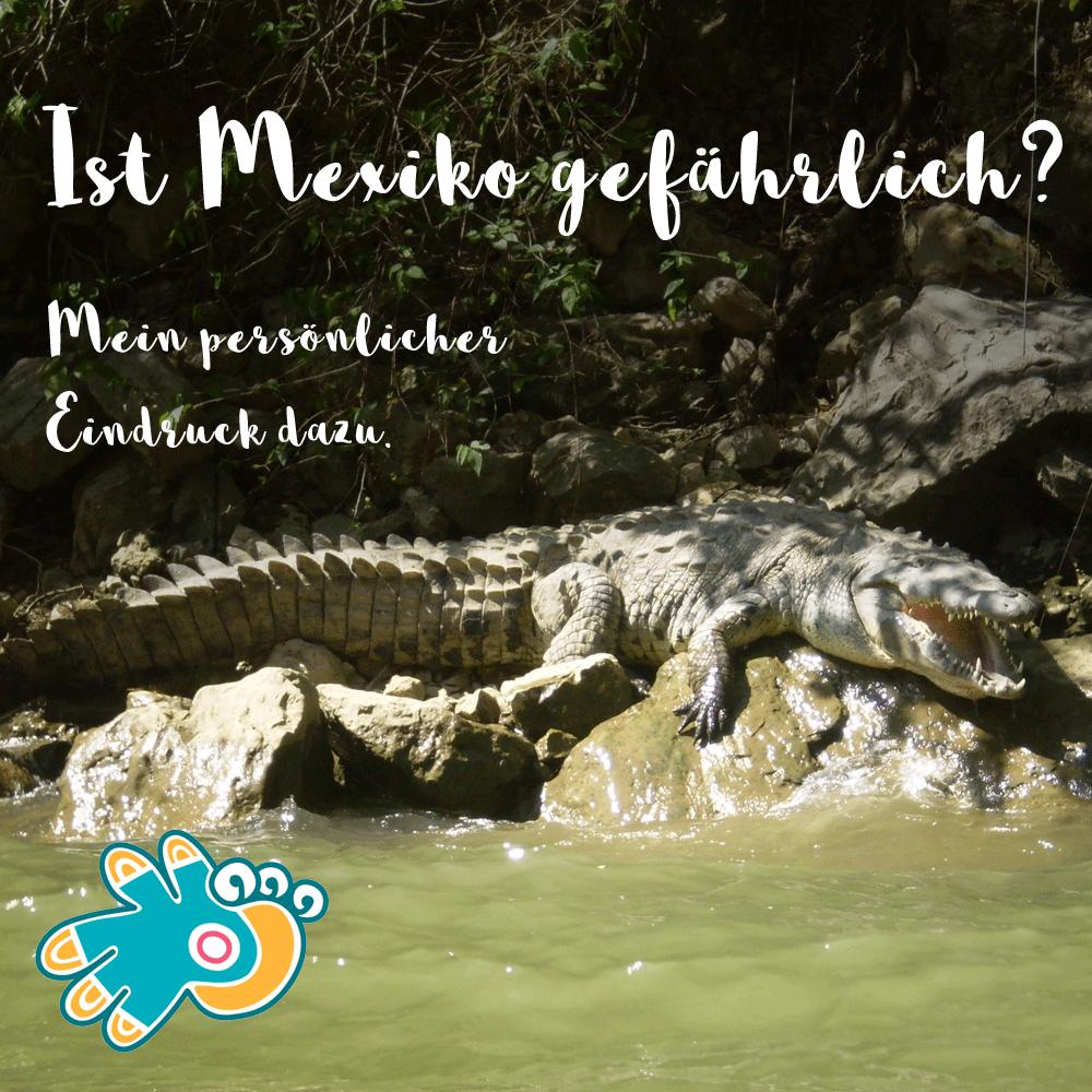 Mexiko gefährlich? Krokodil