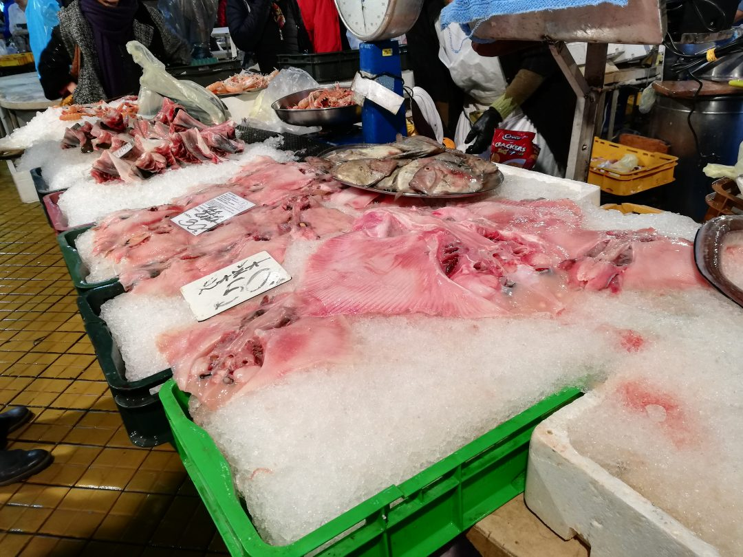 frischer Fisch Rochen